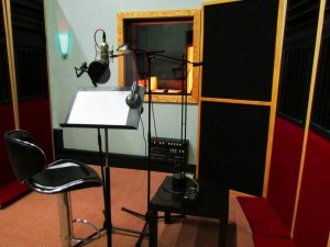 voice over mehak2