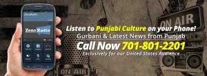 Punjabi Culture facebook